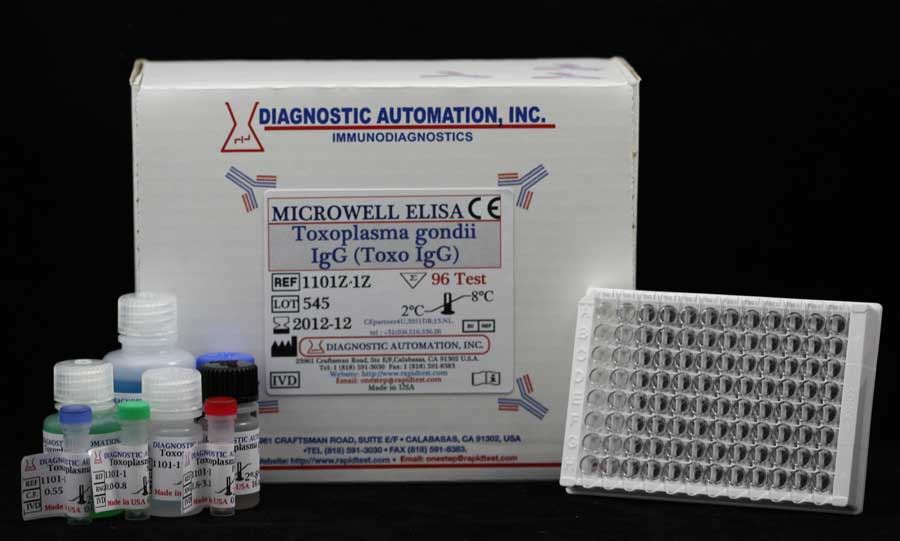 antitestek toxoplazma gondii igg ellen